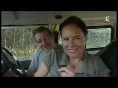 Leão blanc Documentário animalier en entier HD 720p