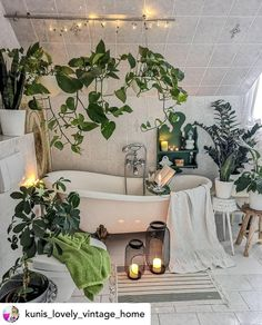 bathroom decoration 33 The Best Jungle Bathroom Decor Ideas To Get a Natural Impression - Whether creating a themed bathroom for the kids or you if young at heart and fun loving then you cant go wrong with cute monkeys and all their safari. Bathroom Goals, Bathroom Trends, Bathroom Ideas, Plants In Bathroom, Bling Bathroom, Bathroom Inspiration, Bedroom With Plants, Plant Rooms, Nature Bathroom
