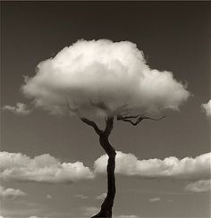 Faith is Torment | Art and Design Blog: Photos by Chema Madoz