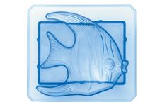 Angelfish ice box buddy mold: You can't go wrong with an adult punch at your party, and this fish will add extra whimsy floating in the bowl (hopefully not belly-up).