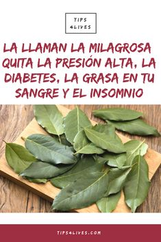 Diabetes, Salud Natural, Spinach, Health Fitness, Herbs, Vegetables, Healthy, Nature, Food