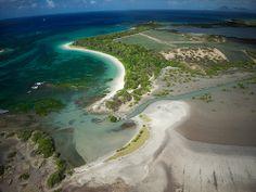Savane des pétrifications (Martinique)