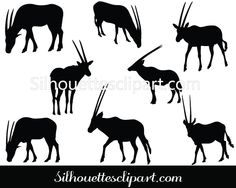 Oryx Vector Graphics Download Oryx Silhouette