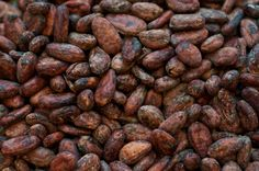 Cocoa flavanols associated with improved memory in seniors - Medical News Today http://www.medicalnewstoday.com/articles/284400.php