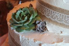 Eat the cake and replant the cuttings, the flowers that keep on giving! Italian Wedding Traditions, Succulent Wedding Favors, Replant, Cuttings, Cake Toppers, Succulents, Traditional, Creative, Flowers