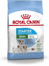 What And How To Feed Your Pregnant Dog Pregnant Dog Large
