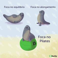 Foca no Pilates  Piadas de Pilates Pilates Com Humor