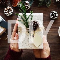 A simple guide to a minimalistic Christmas. Let's keep it simple with our wrapping ideas! All you need is some monotone wrapping paper, a few evergreen branches, an acorn with twine & a paper gift tag to get this look!