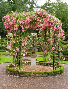 Rose Gazebo (Warwick Castle, England) by Andrew Pescod