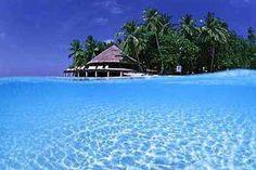 Maldivas | Lua de Mel nas Maldivas...casamento consumado. http://www.allways.pt/lua-de-mel-maldivas-905.html