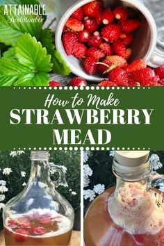 In it's simplest form, mead is a fermented alcohol drink made with honey and water. Learn how to make mead at home with this one gallon mead recipe to try. While this is a strawberry mead recipe, the process is flexible. You can use a variety of different fruit to flavor your homemade mead: Blackberry, peach, plum... #fermenting #drinks #booze via @Attainable Sustainable