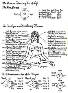 Sacred Wheel Teachings and Self-Development Techniques Church of the Cosmos Temple of Light Kundalini Yoga Poses, Wicca, Temple Of Light, Healing Codes, Spirit Science, Chakra Meditation, Mind Body Soul, Tantra, Spiritual Awakening