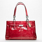 Coach Chelsea patent carryall -- love it! I just can't see myself spending so much for a purse.