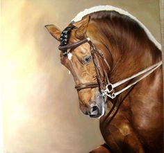 Horse painting by Kim Irwin Horse Magazine, Hyper Realistic Paintings, Horse Artwork, Andalusian Horse, Horse World, Horse Drawings, Mundo Animal, Color Pencil Art, Equine Art