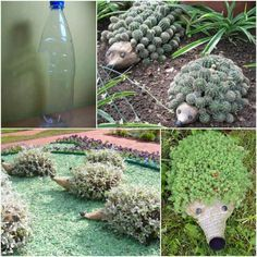 Pet in a bottle. Cut a portion of a plastic bottle out leaving the lid on nozzle of bottle. Poke holes in opposite side of cutout for drainage. Place potting soil in bottle and plant with whatever small plant you wish to have. Draw two eyes on nozzle. Put your plant pet in your yard or garden and enjoy.