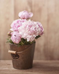 Peonies photograph floral wall decor photo by IonAnthosPhotography