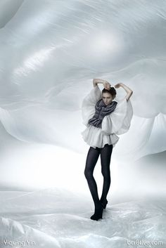 Yiqing Yin's Dream Collection