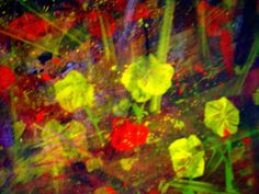 flores y deseos.. Flowers and desires. Medium Egg Tempura by ~AMZNFX