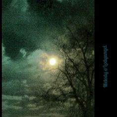 Moon held by branches. Copyright Melody Bills-Hubbard