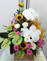 Gio hoa dep, shop hoa thai Binh Hãy tặng người thân của bạn những giỏ hoa đẹp nhất. http://www.dienhoa360.com/hoa-gi%E1%BB%8F.html