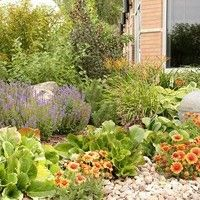 Landscape Design for Commercial Projects - gallery of landscaping ideas for commercial areas or business landscaping Landscaping Ideas, Landscape Design, Commercial, Yard, Design Ideas, Gallery, Business, Plants, Projects