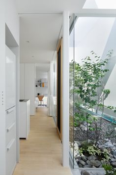Green Edge House / ma-style architects | ArchDaily