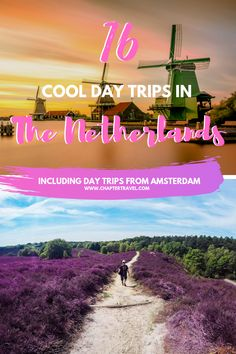 16 Cool Day Trips in the Netherlands including day trips from Amsterdam - #16 #Amsterdam #cool #Day #from #in #including #Netherlands #the #trips Day Trips From Amsterdam, Amsterdam Travel, Amsterdam Itinerary, European Destination, European Travel, Europe Travel Guide, Travel Destinations, Holiday Destinations, Travel Guides