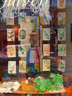 window display - bird book pages