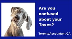 Common Tax Areas When Canadian Tax Payers Get Confused Tax Accountant, Confused, Mistakes, Accounting, Investing, Canada, Business, Business Accounting, Store