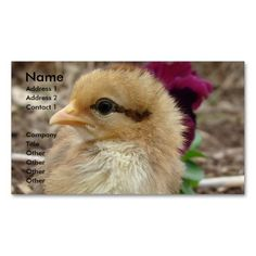 Bantam Chick in the Garden Business Cards