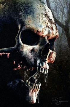 1000 images about scary stuff on pinterest skulls skull pictures