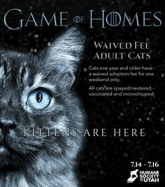 "The Humane Society of Utah ties in a new season of Game of Thrones with the ""Game of Homes"". Check out their posters for inspiration and think about how you can tie adoptions in to popular shows."