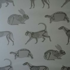 perfect wallpaper for vet's office