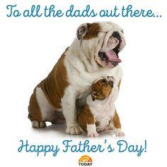 Happy Fathers Day! #instagood #L4L #instafollow #pets
