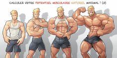 Et toi ? Quel est ton potentiel de craquage ? http://www.bodyssime.com/quel-est-votre-potentiel-musculaire-naturel-maximal-3/  Fais craquer les filles avec Crakyaune ! https://crakyaune.wordpress.com/
