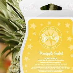 Sweet and tart, like a refreshing scoop of pineapple sorbet. https://michelledelduca.scentsy.us/