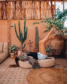 Pricked by a cactus thorn, now you are wondering if cactus poisonous is a thing or not. Here are some tips, tricks that will guide to cactus thorns. Outdoor Spaces, Outdoor Living, Gazebos, Indoor Cactus, Bohemian Decor, Home Design, Terracotta, Exterior Design, Garden Design