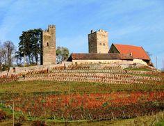 Burg Neipperg, Brackenheim