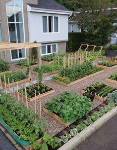 Raised garden bed inspiration #pottedvegetablegarden