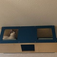 Wally Corner Plus Cat Shelf Cat Step Cat Gift Wall Mounted Cat Activity Centre, Activity Centers, Post Office, Cat Climbing Shelves, Shelter, Cat Stairs, Cat Gym, Cat Perch, Wood Cat
