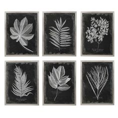 Mesmerize Hand Painted Canvas | Uttermost Painting Prints, Wall Art Prints, Framed Prints, Paintings, Frames On Wall, Framed Wall Art, Metal Frames, Farmhouse Frames, Modern Farmhouse