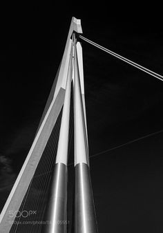 Erasmusbrug by drbob2502 #architecture #building #architexture #city #buildings #skyscraper #urban #design #minimal #cities #town #street #art #arts #architecturelovers #abstract #photooftheday #amazing #picoftheday