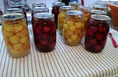 Cómo elaborar fruta en almíbar | EROSKI CONSUMER. Conservar las frutas en almíbar permite aprovechar mejor la compra y disfrutar de los sabores del verano en otras épocas del año