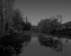 Giverny I, Frankreich by Elger Esser