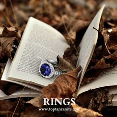 Browse Halloween special collection of Tanzanite Rings ! Tanzanite Rings, Engagement Jewelry, Feeling Special, Sapphire, Diamonds, Wedding Photography, Halloween, Collection, Beautiful