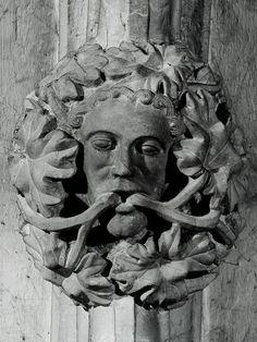 Tree Worshipers ...