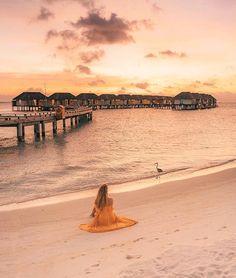 7,273 публикации – Вижте снимки и видеоклипове в Instagram, правени в/ъв 'VELASSARU MALDIVES'