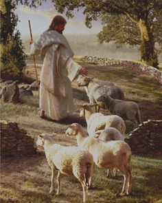 JESUS WANTS US TO FOLLOW HIM LIKE LITTLE SHEEP. IF YOU DON'T KNOW HOW A SHEEP FOLLOWS, LOOK IT UP, OR LEAVE ME A MESSAGE AND I WILL ANSWER THAT FOR YOU.
