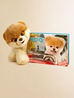 Boo: Little Dog in the Big City (Stuffed animal + book) - I want this for Christmas! haha #nerd