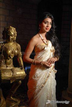 Shriya-Saran-stills-(14)